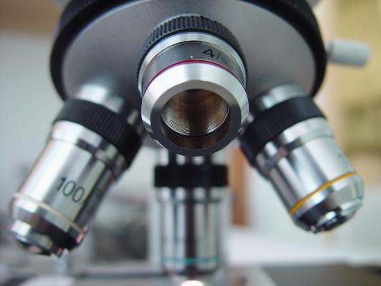 Na UMCS w Lublinie rozpoczęło działalność Laboratorium Mikroskopii Elektronowej (źródło: sxc.hu)