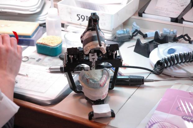 Dentysta przedłuża specjalizację (foto: sxc.hu)