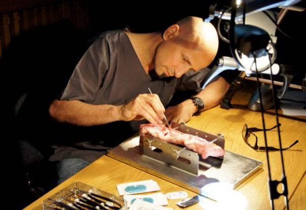 Certyfikaty programu prof. Hurzelera rozdane (fot. Dental Depot Wasio)