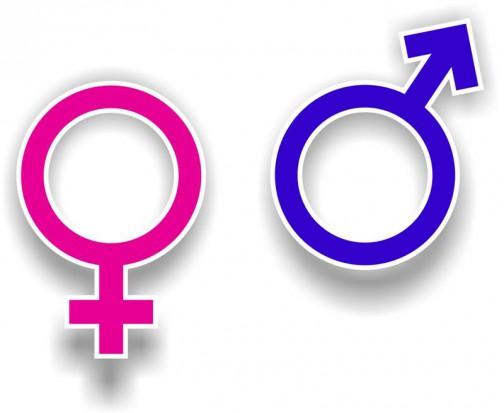 Czy płeć ma znaczenie, czyli co doceniają mężczyźni a co kobiety (fot. sxc.hu)