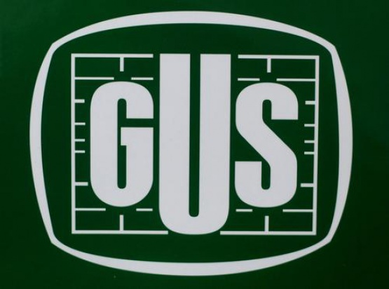 GUS o dentystach (fot. GUS)