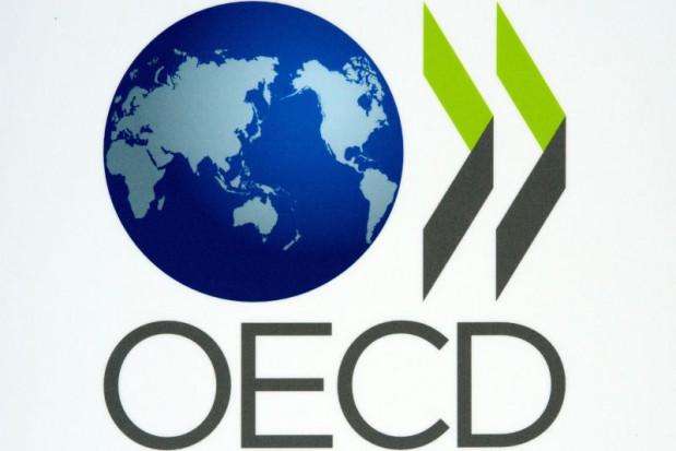 Polak narzeka, ale za dentystę płaci sam (fot. OECD)