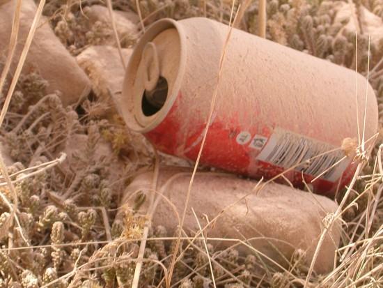 Niszczycielska siła soft drinków (foto: sxc.hu)