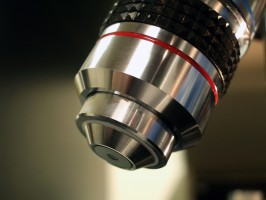 Naukowcy mogą dłużej zabiegać o 240 mln zł