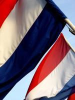 Holandia: dentyści na cenzurowanym pacjentów