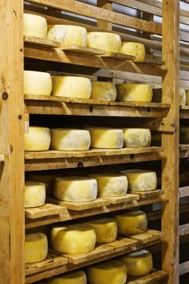 Żółty ser przeciwdziała próchnicy (fot. sxc.hu)