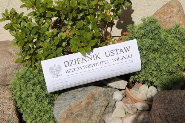 Świadczenia gwarantowane - ambulatoryjne:  projekt rozporządzenia (foto: infoDENT24.pl)