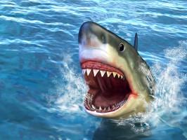 Dentystka o wyobrażeniach wciąż funkcjonujących u pacjentów