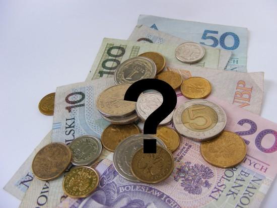 Pracodawcy RP apelują o możliwość stosowania dopłat