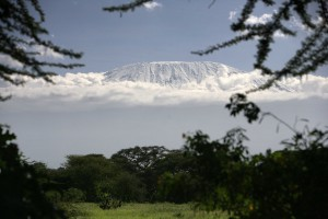 Dentysta na Kilimandżaro