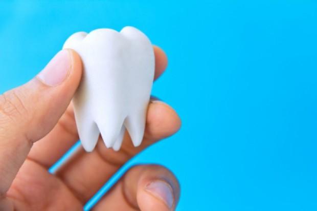 """""""Zębowa"""" biżuteria w wyjątkowo mrocznych klimatach"""