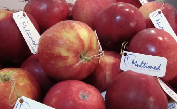 Centrum Stomatologii Estetycznej Multimed rozda pacjentom tonę jabłek
