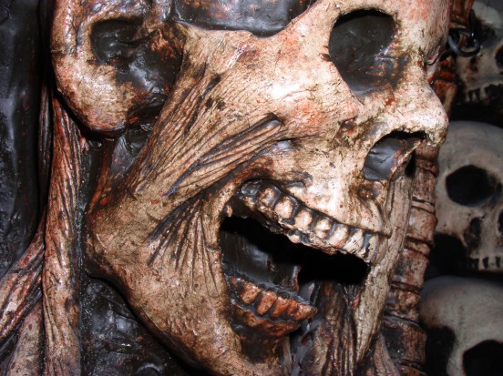 Wiedza o ludziach zakodowana w zębach