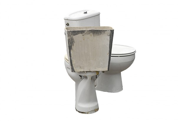 WC zagrożeniem dla zdrowia jamy ustnej