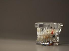 Technicy dentystyczni zrzeszają się w Warszawie