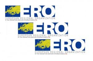 ERO: nie wolno dopuścić do ograniczenia roli Zgromadzenia Ogólnego FDI