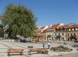 Sandomierz: być może powróci opieka stomatologiczna w szkołach samorządowych