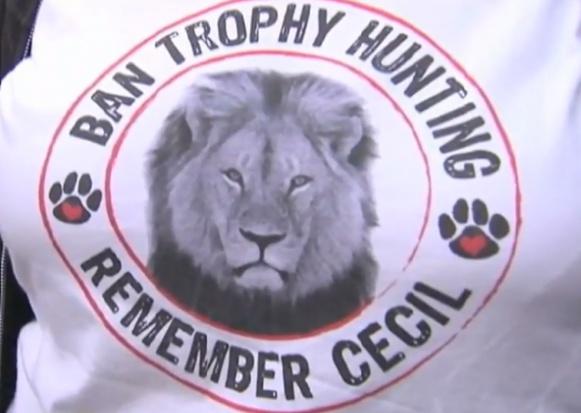 Dentysta, zabójca lwa Cecila, nie usłyszy zarzutów