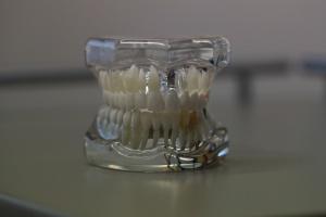 FDI Poznań dla techników dentystycznych