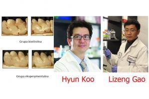 Nadtlenek wodoru z nanocząsteczkami atakuje próchnicę