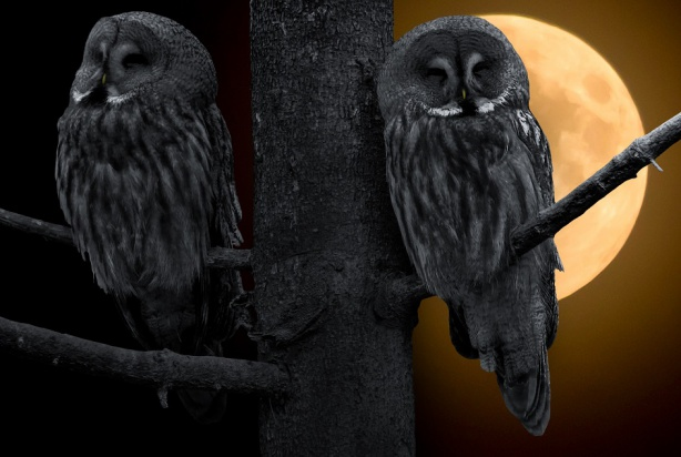 Nocny tryb życia zwiększa ryzyko próchnicy!