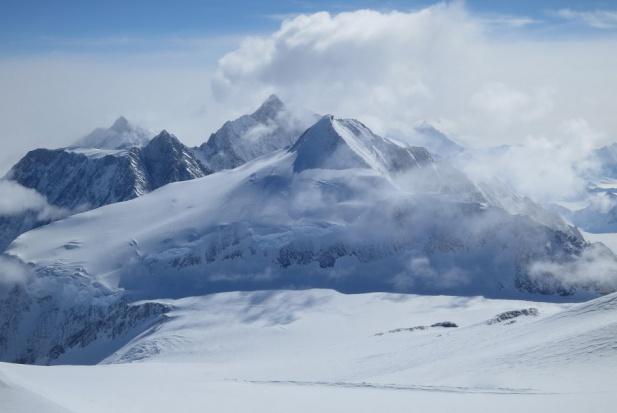 Endodonta na najwyższym szczycie Antarktydy