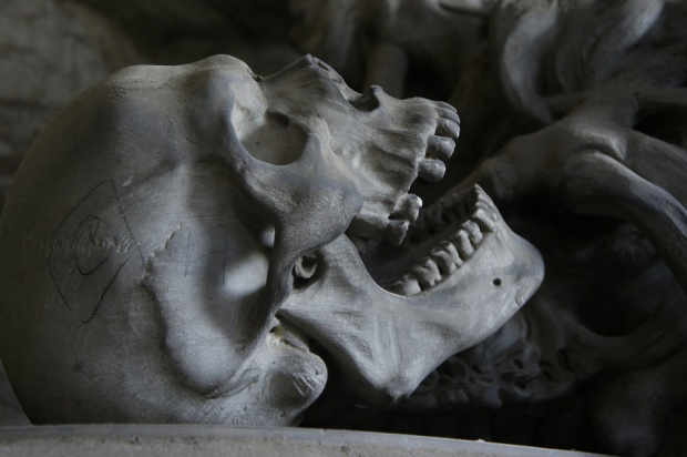 Zęby zdradzają pochodzenie
