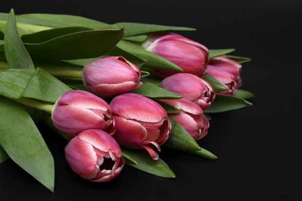Dentysta co rozdaje kwiaty