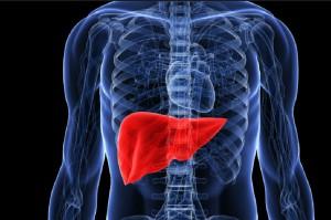Paradontoza zwiększa ryzyko śmiertelności u pacjentów z marskością wątroby
