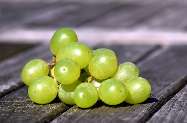 Ekstrakt z nasion winogron wzmacnia zębinę