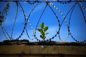Kto chce leczyć zęby więźniom ze Sztumu