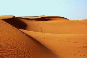 Jelenia Góra pustynią stomatologiczną dla niepełnosprawnych