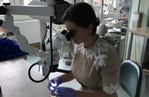 Wymiana know-how na wrocławskiej stomatologii