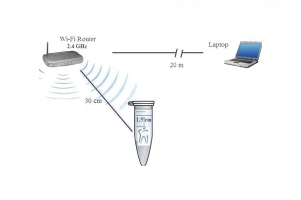 Amalgamat wystawiany na ekspozycję Wi-Fi – nie jest dobrze
