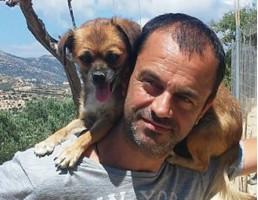 Dentysta prowadzi schronisko dla psów