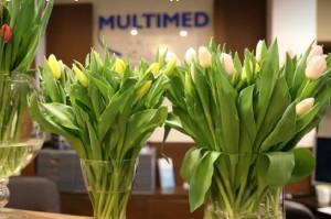 Multimed: jak to się robi w ŚDZJU