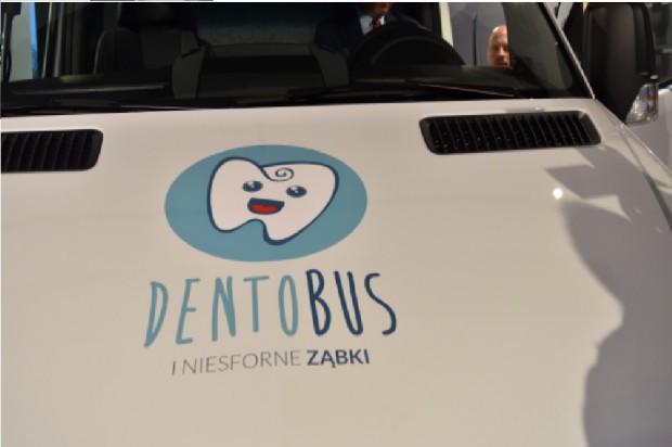 Dolny Śląsk: cała wiedza o dentobusach
