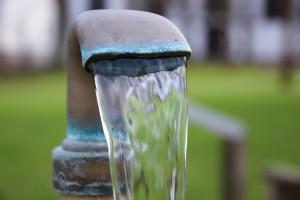Długofalowe skutki wody fluoryzowanej przebadane raz jeszcze