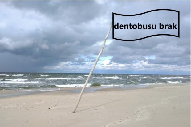 Na Pomorzu boją się dentobusów