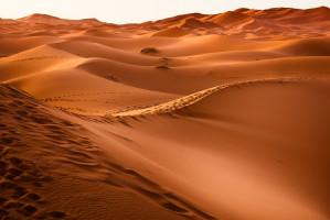 Pustynny krajobraz doraźnej pomocy stomatologicznej