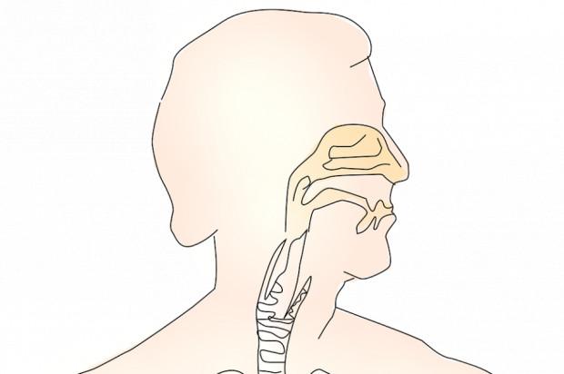 Leczenie kanałowe zęba na przewlekłe zapalenie zatok?