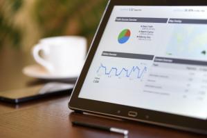 Dental Tree lideruje w statystykach Google Trends