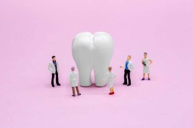 Farmy nowych zębów coraz bliżej
