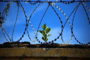 Duży sukces NRL: będzie złagodzenie kar za nieumyślne spowodowanie śmierci