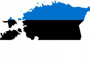 FDI: Estonia liderem w profilaktyce próchnicy dzieci
