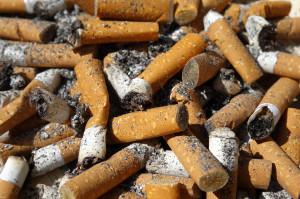 Nawet zimne niedopałki papierosów są kancerogenne
