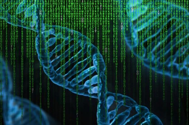 Sekwencja genetyczna koronawirusa wyizolowanego od polskiego pacjenta