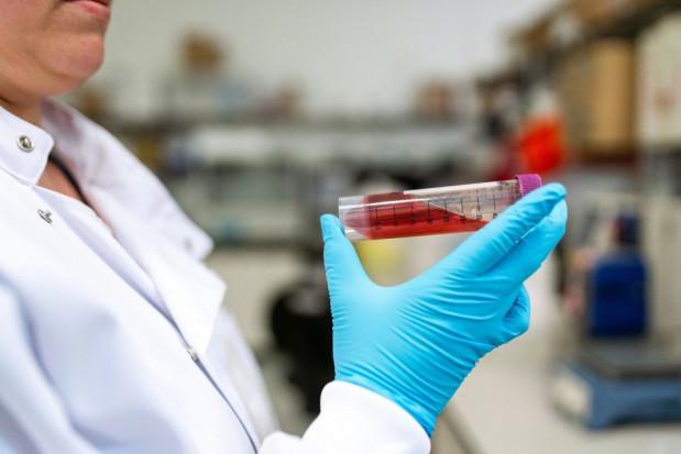 Testy antygenowe: sprawdzana jest ich czułość