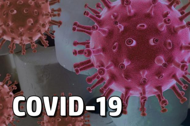 MZ: 141 nowych zakażeń koronawirusem