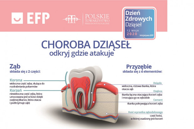 Polskie Towarzystwo Periodontologiczne aktywne podczas Światowego Dnia Zdrowych Dziąseł